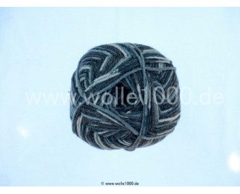 Farbe 130-01 - dunkle grautöne-natur - Himalaya Socks Bamboo Sockenwolle 100g