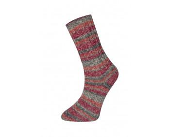 Farbe 160-02 - Himalaya Socks Sockenwolle 100g