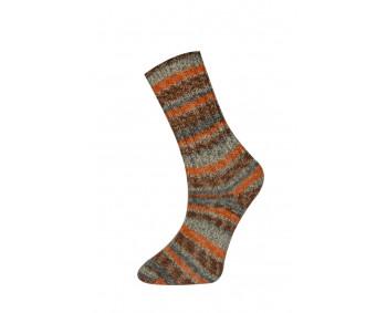 Farbe 160-03 - Himalaya Socks Sockenwolle 100g