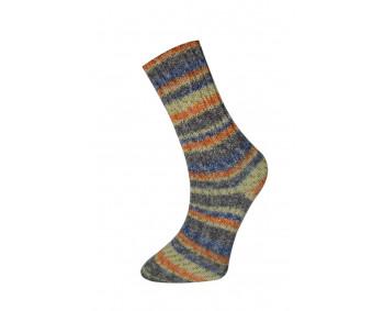 Farbe 160-04 - Himalaya Socks Sockenwolle 100g