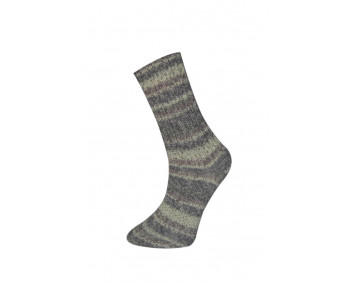 Farbe 170-01 - Himalaya Socks Sockenwolle 100g