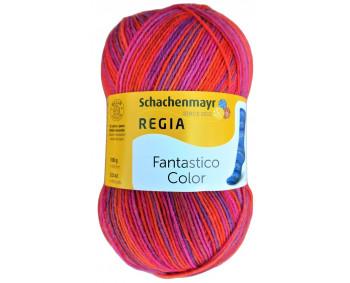 Regia Fantastico Color - Sockenwolle 100g - Farbe 06072