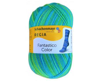 Regia Fantastico Color - Sockenwolle 100g - Farbe 06074
