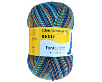 Regia Fantastico Color - Sockenwolle 100g - Farbe 06076