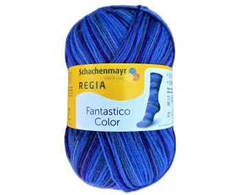 Regia Fantastico Color - Sockenwolle 100g - Farbe 06077