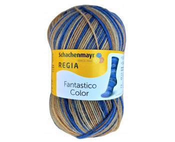 Regia Fantastico Color - Sockenwolle 100g - Farbe 06078