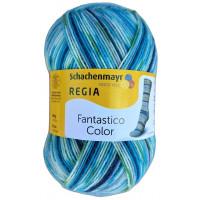 Regia Fantastico Color - Sockenwolle 100g - Farbe 06084