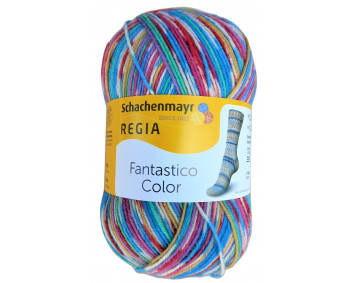 Regia Fantastico Color - Sockenwolle 100g - Farbe 06089